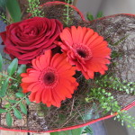Germini/ruusu mansetilla Hinta 20,00 € Tilaustunnus:GRM 1